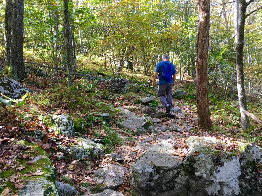 Man in blue shirt walking ahead in rocky area in the woods on a trail