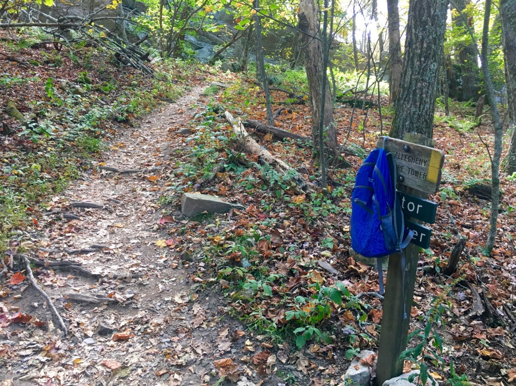 Wooden sign with blue backpack hanging on it in the woods and a trail leading upwards